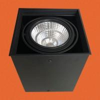 炜圣照明 9W射灯 AR70铁材一位明装射灯筒灯室内天花灯商照角度24°