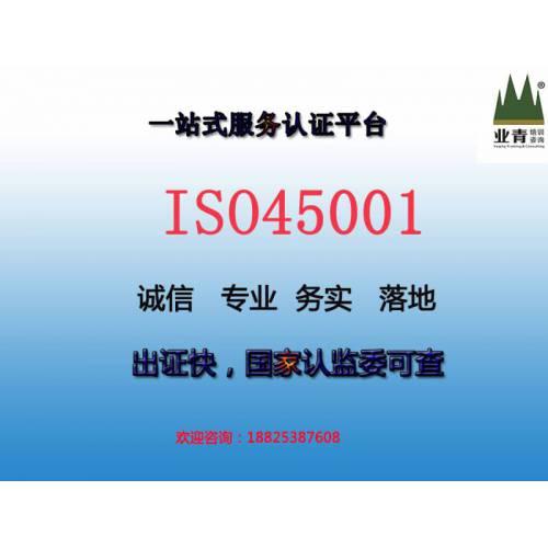 华南地区中小企业职业健康安全体系辅导认证ISO45001,价平专业